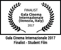 Gala Cinema Internazionale Venezia, Italy 2017